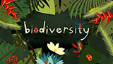 Why is biodiversity important?